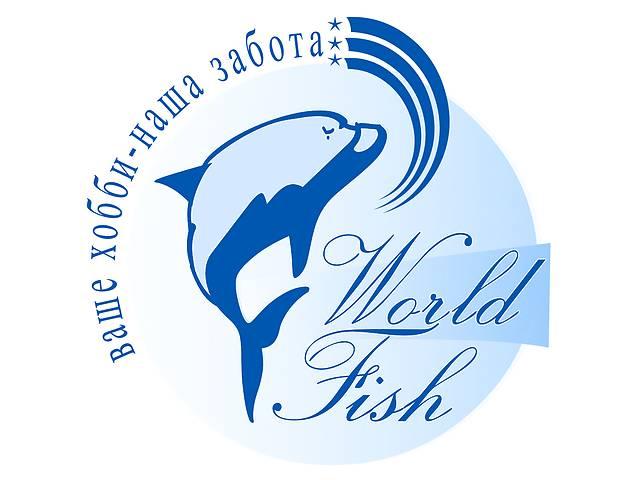купить бу Аквариумные рыбки оптом с доставкой по украине и снг в Харкові