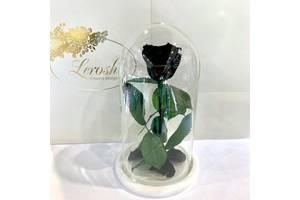 Черная роза в колбе Lerosh - Classic 27 см SKL15-279524