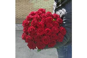 Доставка цветов по Днепру. Домашняя роза. Цветы от производителя!!!
