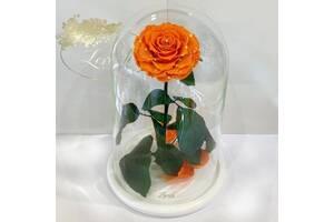 Оранжевая роза в колбе Lerosh - Lux 33 см SKL15-279549