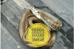 Отпугиватель змей Ls-107 - гадюки, до новых встреч!
