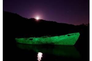 Водостойкая светящаяся краска Нокстон 0.5 л