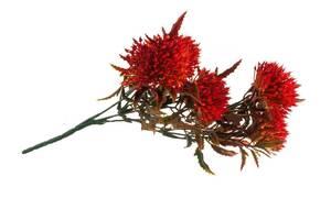 Искусственные цветы SKL11-249697