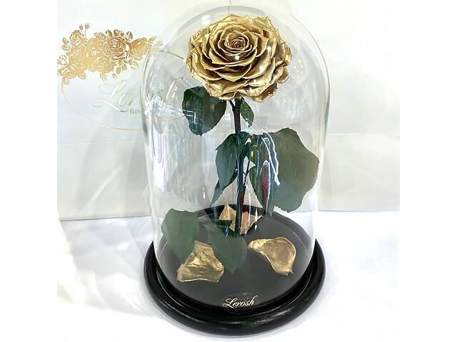 купить бу Золотая роза в колбе Lerosh - Lux 33 см SKL15-279544 в Харькове