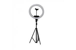Набор блогера Кольцевая LED лампа AL-33 диаметр 33 см с креплением телефона и пультом и штативом