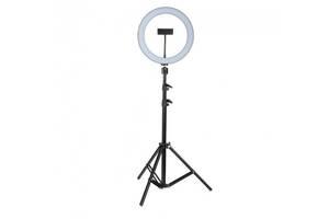 Профессиональная кольцевая светодиодная лампа LED RING RL-21 (М-54) 65W на штативе для визажиста 54 см