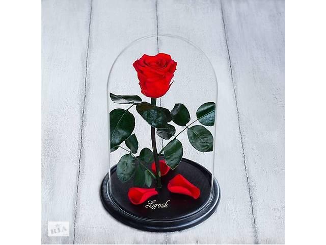 купить бу Стабилизированная роза в колбе Lerosh - Standart 33 см, Красная SKL15-138918 в Одессе