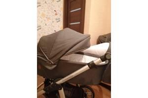 Коляска 2 в 1 Baby Design Dotty
