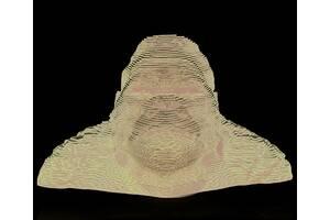Скульптурний 3D пазл DaisySign TERK