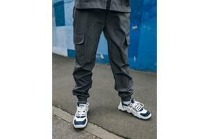 Штаны спортивные для мальчиков серые демисезонные Softshell Easy SKL59-291149