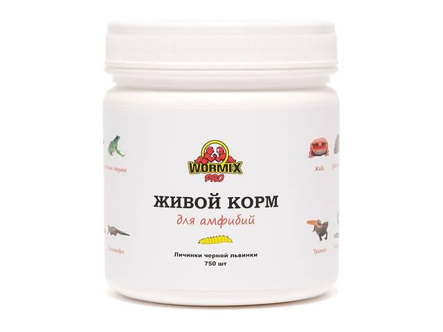Живой корм для амфибий - Чёрная львинка 750 шт.- объявление о продаже  в Киеве