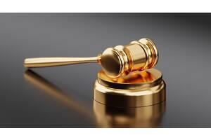 КОРПОРАТИВНЫЕ ПРАВА (изменения в устав, наследование ООО, покупка корпоративных прав)