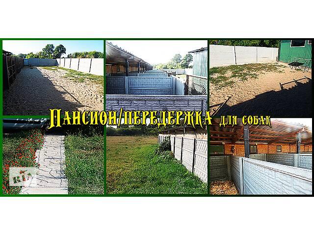 продам Передержка/гостиница для собак бу  в Украине