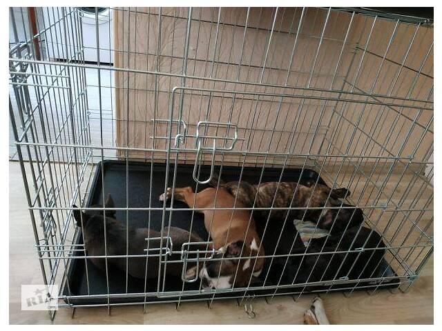 бу Пластиковый поддон в клетку (клетка) для собак TRIXIE CROCI №4,5,6,7 в Киеве