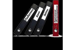 Консультация бухгалтера днепропетровск электронная отчетность программы только в фонды