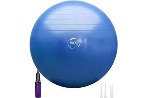 М'яч для фітнесу (фітбол) WCG SPORT 65 см Anti-Burst 300кг гімнастичний + насос