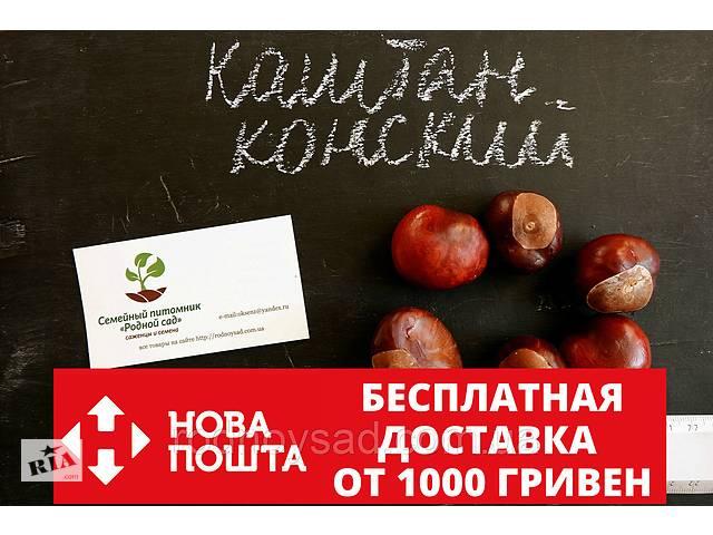 купить бу Каштан конский семена (10шт) для выращивания саженцев семена для саженцев + инструкция в Андреевке