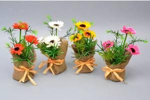 Цветы в вазоне Ромашки SKL11-209168