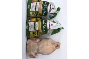 Цыплята Halal тушки, Цыплята табака 0,800-0,900-1000гр, опт,