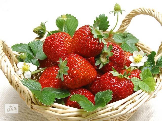 бу Сбор лесных ягод и клубники  Финляндия  в Украине