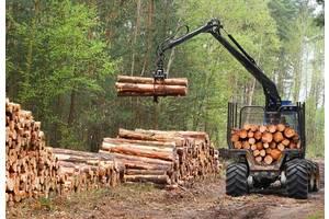 База данных всех, кто занимается деревом в Хмельницкой области