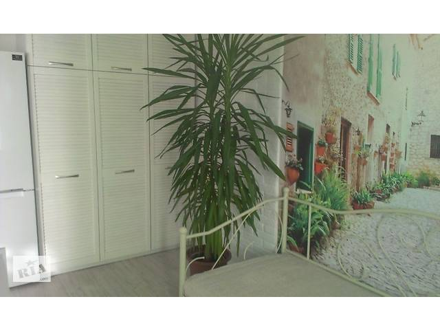 продам Квартира в центрі міста бу в Луцке