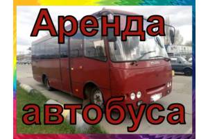 Пассажирские перевозки детей/ Трансфер автобусом