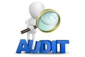 Предоставлю аудиторские и бухгалтерские услуги, а также консультационные услуги.