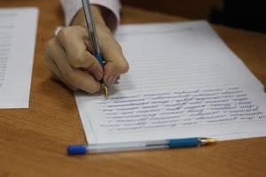 Пишу  эссе, сочинения, делаю презентации, конспекты, дз