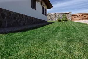 Устройство рулонного газона, доставка, укладка