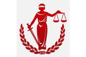 Юрист. Семейное право, наследство, кредиты