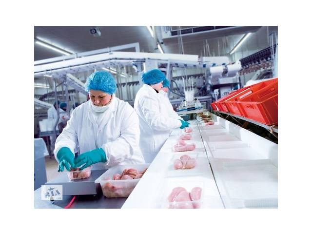 Рабочие м/ж на птицефабрику в Латвию (г.Рига).- объявление о продаже   в Украине