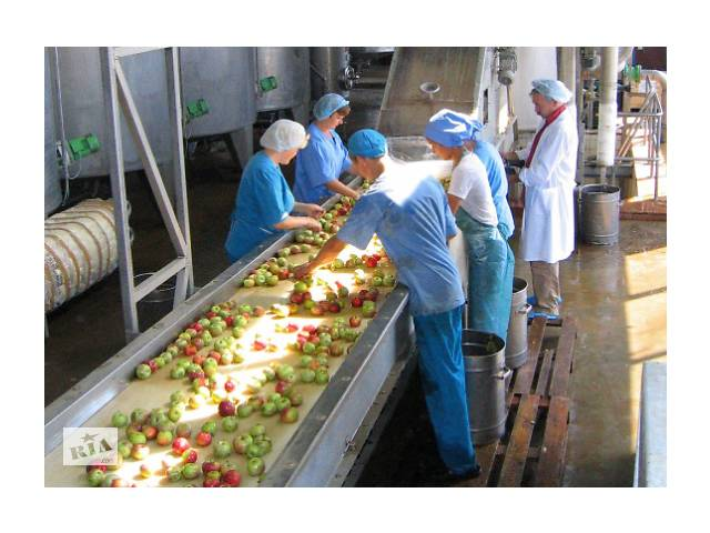 Работа в Чехии. Разнорабочие на овощной завод. Для муж и жен. GoWork