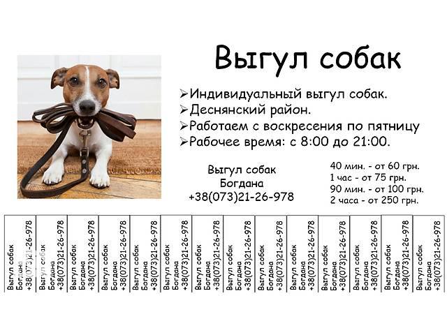 купить бу Выгул собак в Киеве