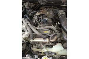 YD25DDTi Nissan Pathfinder R51 двигун після кап.рем. купити Ніссан Патфайндер мото двигатель  Патфайндер 2.5d двс yd25