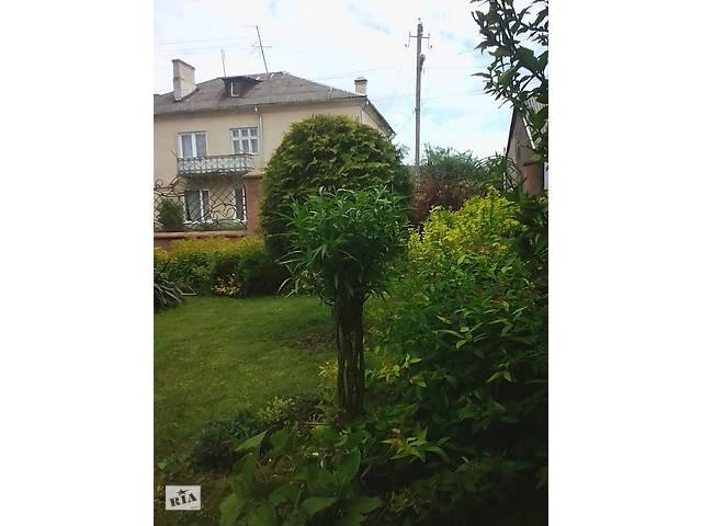 """Живе плетене дерево """"Зелена Корона"""", західна пальма.- объявление о продаже  в Ужгороді"""