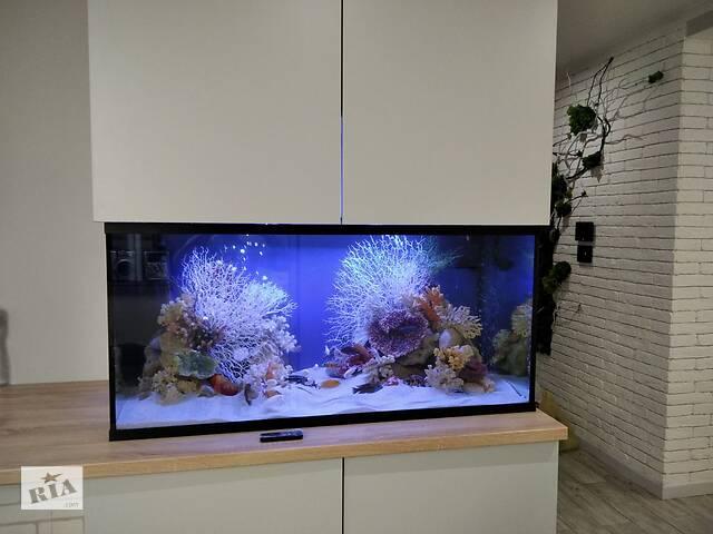 бу Акваріум ,акваріумні риби в Виннице