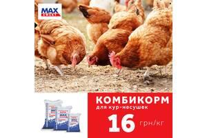 Комбикорм MAX эффект для кур несушек от 9 до 17 недель
