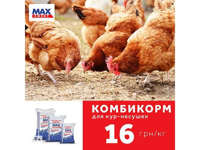 купить бу Комбикорм MAX эффект для кур несушек от 9 до 17 недель в Харькове