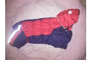 Комбинезон для собачки-девочки, куртка, костюм