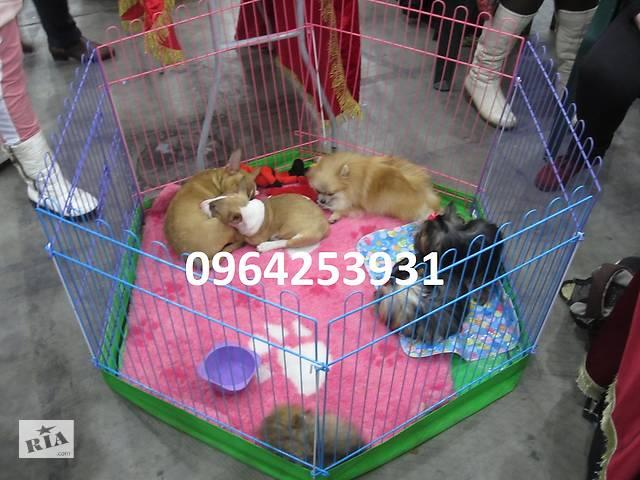 Манеж клетка для собак щенков 120х60х63 с дверкой Бесплатная доставка!- объявление о продаже  в Киеве