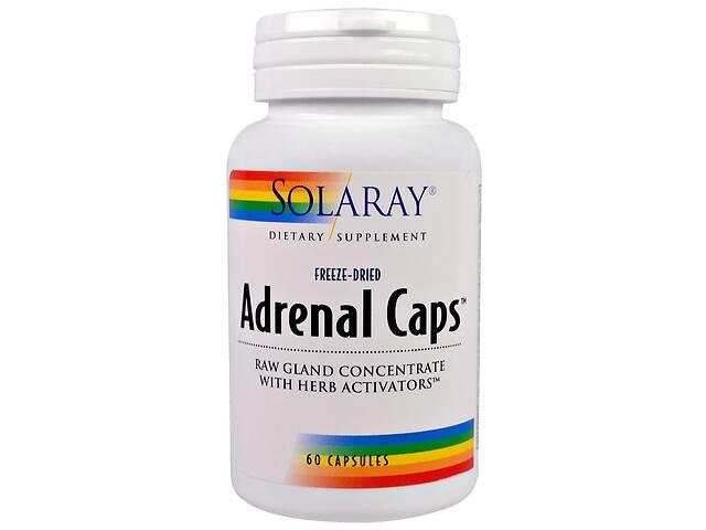 купить бу Здоровье надпочечников Adrenal Caps Solaray 60 капсул (19900) в Киеве