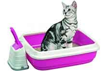 Наповнювачі для котів
