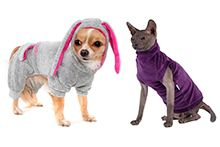 Одяг для тварин