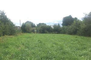 Куплю земельні ділянки на Соснах без посередників
