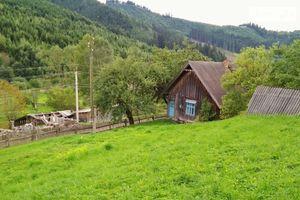 Куплю земельну ділянку в Путилі без посередників