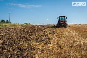 Здається в оренду земельна ділянка 250 соток у Херсонській області