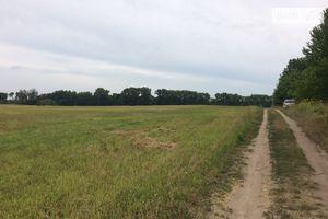 Куплю землю сельскохозяйственного назначения на Медвежьем Ушке без посредников