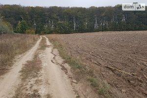 Куплю землю сельскохозяйственного назначения на Давыдковцах без посредников
