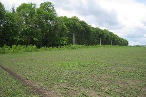 Продается земельный участок 112.4 соток в Хмельницкой области